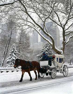 Central Park In Snowfall Poster