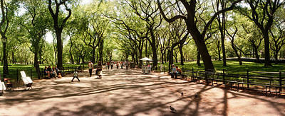 Central Park In The Spring Time, New Poster