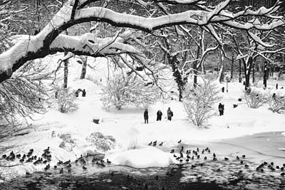 Poster featuring the photograph Central Park Lake Blizzard by Dave Beckerman