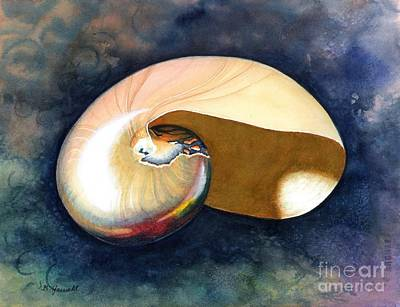 Chambered Nautilus Poster by Barbara Jewell
