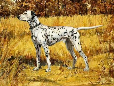 Chap Dalmation Dog Poster by Don  Langeneckert