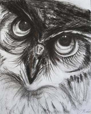 Charcoal Owl  Poster by Naomi McQuade