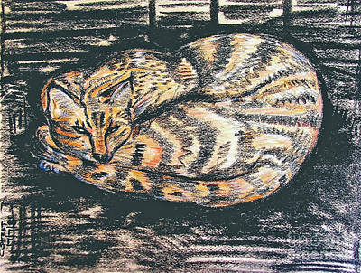 Charcoal Tabby Poster