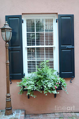 Charleston French Quarter Window Box And Street Lamp - Romantic Charleston Window Flower Boxes Poster by Kathy Fornal