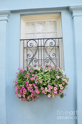 Charleston Window Box Flower Photography - Charleston Rainbow Row Blue Aqua Dreamy Flower Window Box Poster by Kathy Fornal