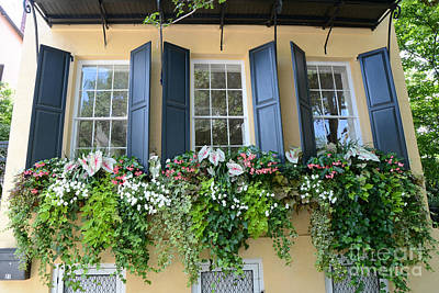 Charleston Window Box Flower Photography - Charleston Yellow Blue Green Floral Window Boxes Poster by Kathy Fornal