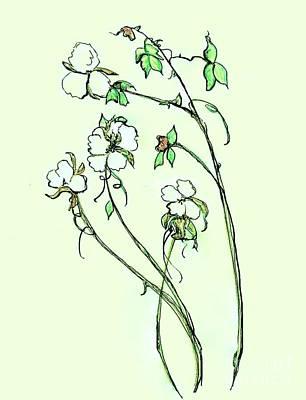 Charming Cotton Bolls Poster by Eloise Schneider