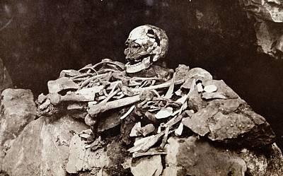 Cheddar Man Bones Poster by Paul D Stewart