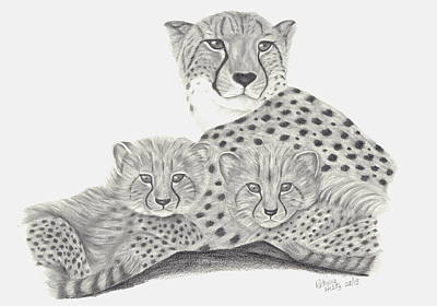 Cheetah And Her Cubs Poster by Patricia Hiltz