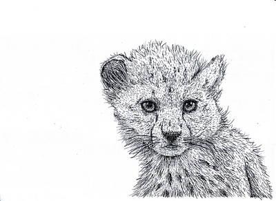 Cheetah Cub Poster by Karl Addison