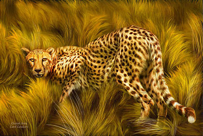 Cheetah Stare Poster by Carol Cavalaris