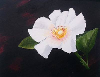 Cherokee Rose Poster by Valorie Cross