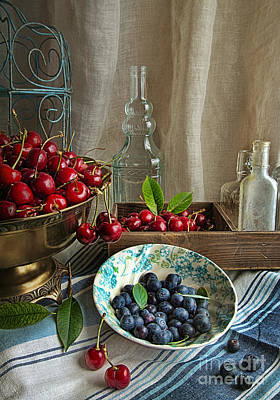 Cherries And Blueberries Poster by Elena Nosyreva