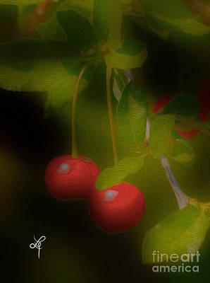 Cherries Poster by Leo Symon