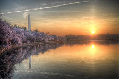 Poster featuring the photograph Cherry Blossom Sunrise by Michael Donahue