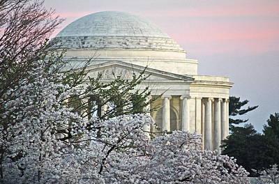 Cherry Blossom Sunset Poster