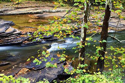Cherry Falls Elk River Poster by Thomas R Fletcher