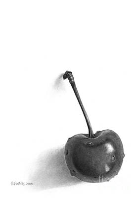 Cherry Pencil Drawing Poster by Andrea Pontillo