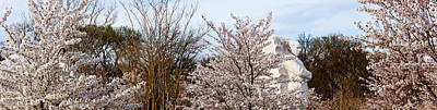 Cherry Trees In Front Of A Memorial Poster by Panoramic Images