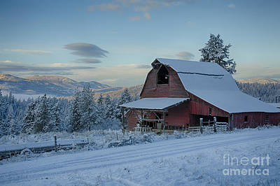 Chewelah Barn Poster by Idaho Scenic Images Linda Lantzy