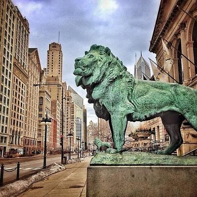 Chicago Art Institute Lion Statue Poster