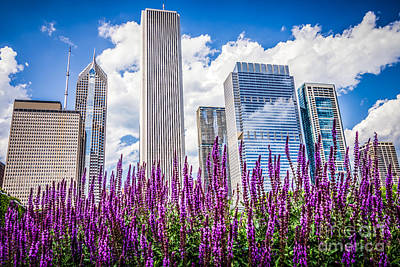 Chicago Downtown Buildings And Spring Flowers Poster
