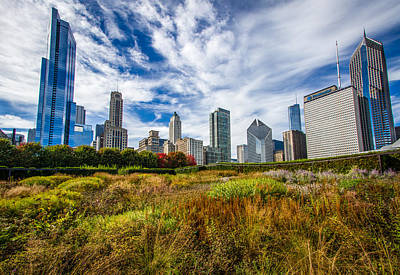 Chicago Skyline From Lurie Garden Poster by Mike Burgquist