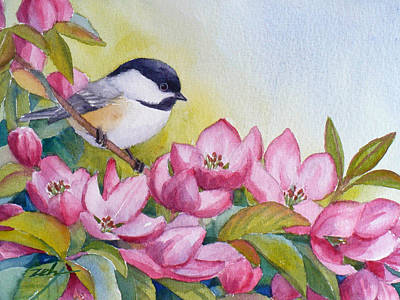 Chickadee And Crabapple Flowers Poster by Janet  Zeh