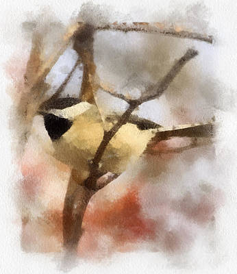 Poster featuring the painting Chickadee Watercolor by Kerri Farley