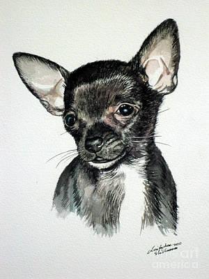 Chihuahua Black 2 Poster