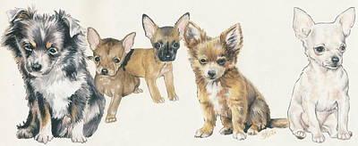 Chihuahua Puppies Poster by Barbara Keith