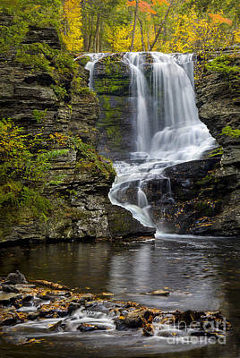 Childs Park Waterfall Poster
