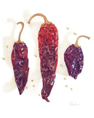 Chili Pepper Pods Poster by Paula Pertile