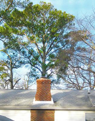 Chimney Tree Poster