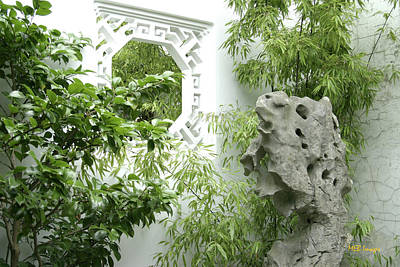 Poster featuring the photograph Chinese Garden by Margaret Buchanan