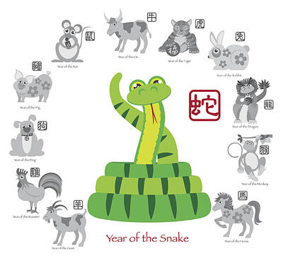 Chinese New Year Snake Color With Twelve Zodiacs Illustration Poster by JPLDesigns