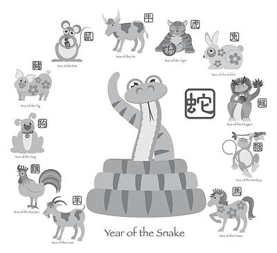 Chinese New Year Snake With Twelve Zodiacs Illustration Poster by JPLDesigns