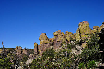 Chiracahua Mountains Poster by Diane Lent