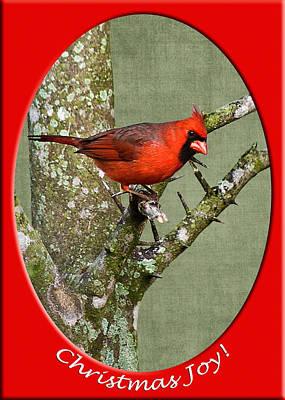 Christmas Joy Poster