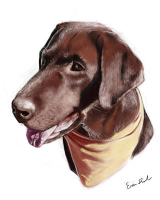 Chocolate Lab Poster by Eric Smith