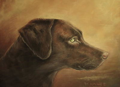Chocolate Lab Poster by Patricia Schneider Mitchell