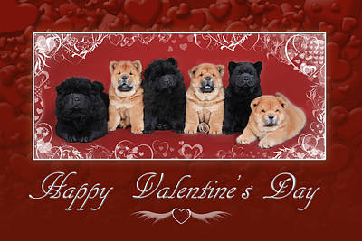 Chow Chow  Valentine Poster