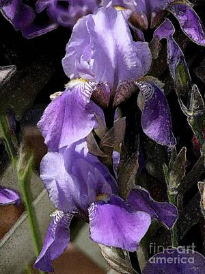 Chris' Garden - Iris 4 Poster by Stuart Turnbull