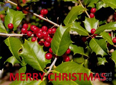 Christmas Card 1  Poster by Rod Ismay