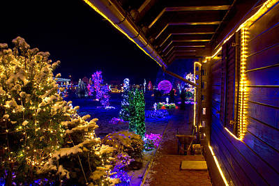 Christmas Fantasy Trees And Wooden House In Lights Poster