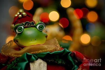 Christmas Frog Poster