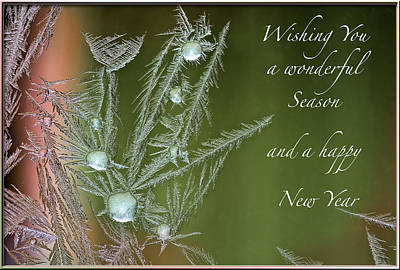 Poster featuring the mixed media Christmas Greeting Card Ice Flowers by Peter v Quenter