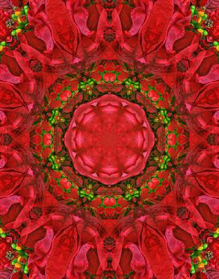Christmas Kaleidoscope Iv Poster