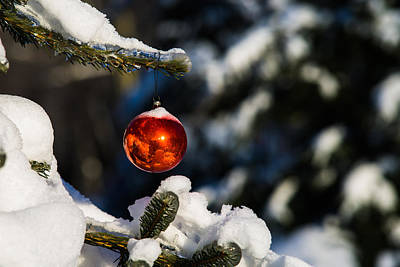 Christmas Tree And Red Ball - Featured 3 Poster by Alexander Senin