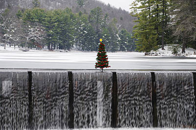 Christmas Tree At Bear Creek Waterfall Poster by Bill Cannon